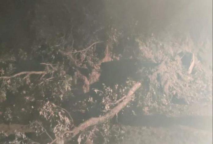 हिमाचल के मुख्यमंत्री के गृह क्षेत्र में चलती गाड़ी पर गिरा पहाड़,